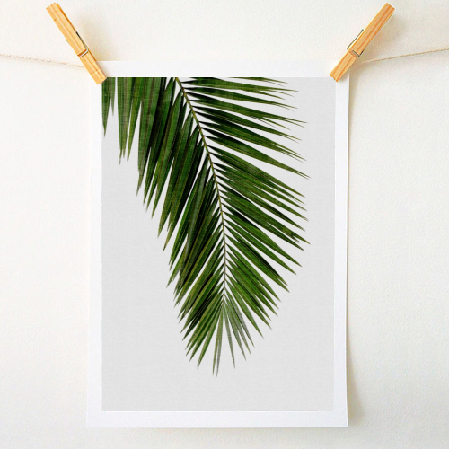 Palm leaf I - quirky prints by ART WOW designer Orara Studio